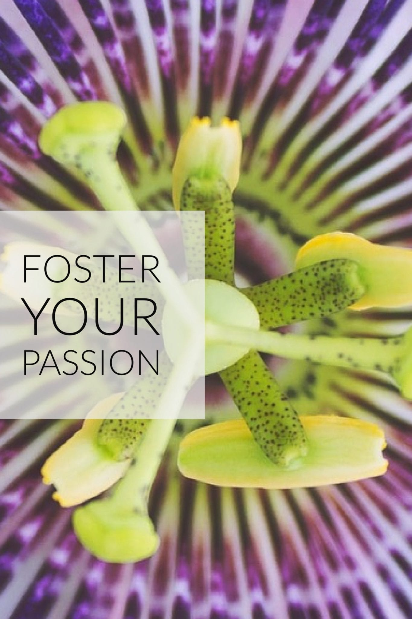 Foster your passion- Tubac School of Fine Art Blog